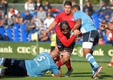 I giocatori di rugby combattono per la palla nel gioco del GP di rugby 7's Fotografia Stock Libera da Diritti