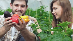 I giovani agronomi controllano il raccolto video d archivio