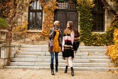 I giovani amici multirazziali che camminano intorno all'autunno parcheggiano, parlare Fotografia Stock Libera da Diritti