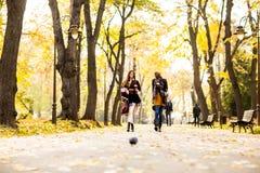 I giovani amici multirazziali che camminano intorno all'autunno parcheggiano, parlare Immagine Stock