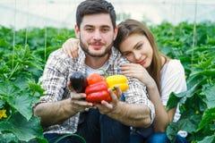 I giovani bei agricoltori stanno tenendo la frutta Immagini Stock