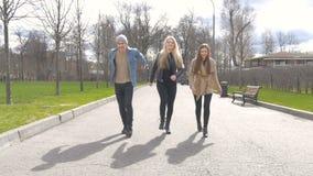 I giovani camminano nel parco, dicono le notizie, comunicano, ridono Buon umore stock footage