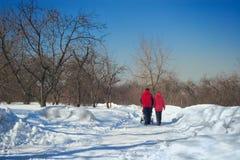 I giovani genitori con il bambino sulla camminata in inverno parcheggiano Fotografia Stock