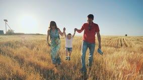 I giovani genitori vanno con il figlio sul giacimento di grano nella sera e l'ascensore divertente sulle mani del bambino Il picc archivi video