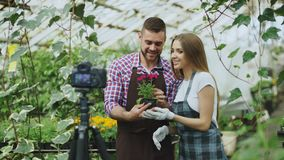 I giovani giardinieri sorridenti delle coppie di blogger nella tenuta del grembiule fioriscono il blog video di conversazione e d Fotografie Stock