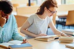 I giovani hanno sollecitato la ragazza dello studente che studia il mucchio dei libri Immagine Stock Libera da Diritti