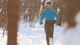 I giovani sport coppia pareggiare in legno alla bella luce solare Inverno Vista posteriore video d archivio