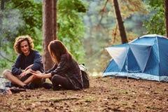 I giovani studenti felici stanno scaldando vicino al falò nella foresta verde fotografie stock libere da diritti