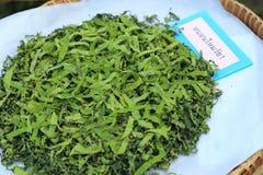 I giovani vermi sulla foglia di verde del gelso con il ` dell'etichetta in primo luogo indicano il ` del baco da seta in tailande Immagine Stock Libera da Diritti