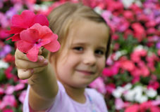 I give you my flower. Cute young girl want to give summer flower Royalty Free Stock Photo