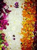 Flowers to lord Budhdha. I got this pic at somawathiya tempel Sri lanka Royalty Free Stock Image