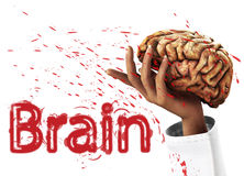 I Got Your Mind. Conceptual medical image about having control of a persons brain Royalty Free Stock Photography