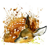 I grafici della maglietta dei cervi, illustrazione dei cervi con l'acquerello della spruzzata hanno strutturato il fondo royalty illustrazione gratis