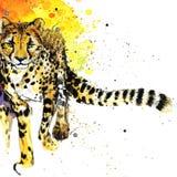 I grafici della maglietta del ghepardo, illustrazione africana del ghepardo degli animali con l'acquerello della spruzzata hanno  illustrazione vettoriale