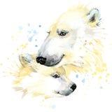 I grafici della maglietta dell'orso polare, illustrazione dell'orso polare con l'acquerello della spruzzata hanno strutturato il  Immagini Stock Libere da Diritti