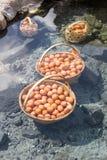 I grandi canestri delle uova bollite sotto acqua calda accumulano Immagini Stock Libere da Diritti
