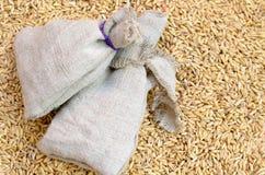 I grani di cereale pota l'avena sparsa su una borsa Immagine Stock Libera da Diritti