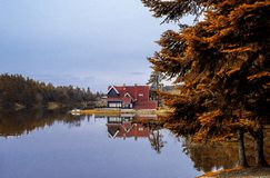 I höst, träd, sjön och reflexion Fotografering för Bildbyråer