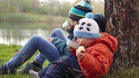I hösten parkera barn som sitter på gräsmattan och, dricka varmt te, går i den nya luften stock video