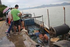 I hamn för shenzhen shekoufiske anslöt fiskebåtar på kusten Arkivbild