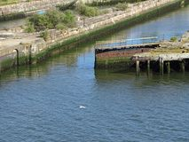 I hamnen av Newcastle arkivfoto