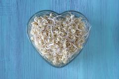 I Hart Bean Sprouts Stock Afbeelding