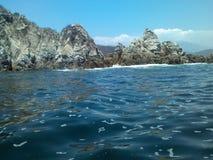 I havet royaltyfri bild