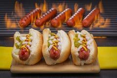 I hot dog grigliati in panini e su un barbecue grigliano Fotografia Stock