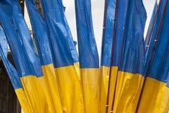 I Kiev på den Khreshchatyk militären ståta Arkivfoto