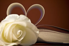 I know that I know nothing. A book with the pages in the shape of heart and a white rose Royalty Free Stock Photos