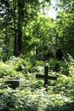 I kyrkogården arkivbild