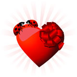 I Ladybugs si accoppiano nell'amore Fotografia Stock