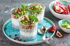 I lager chiapuddingparfait med kiwi, granatäpplet, granola och yoghurt royaltyfri foto