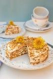 I lager honungkaka med chantilly kräm Royaltyfri Foto