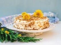 I lager honungkaka med chantilly kräm Royaltyfria Foton