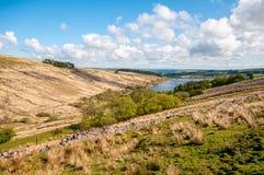 I laghi, attracca e pascola dei segnali di Brecon fotografia stock