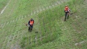 I lavoratori hanno tagliato l'erba con la falciatrice da giardino in vecchio parco archivi video