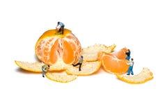 I lavoratori miniatura rimuovono i mandarini della buccia teamwork mandarini Fotografie Stock