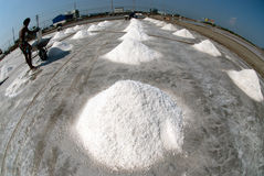 I lavoratori stanno lavorando ad un'azienda agricola del sale in Tailandia Fotografia Stock