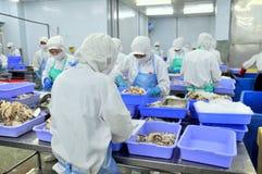 I lavoratori stanno lavorando duro in una fabbrica dei frutti di mare nella città di Ho Chi Minh, Vietnam Immagine Stock