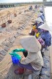 I lavoratori vietnamiti del sale delle donne stanno rilassando dopo il lavoro duro per raccogliere il sale dai giacimenti dell'es Fotografie Stock Libere da Diritti
