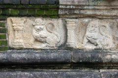 I leoni incisi dal lato della camera del Consiglio nell'isola fanno il giardinaggio a Polonnaruwa nello Sri Lanka centrale Fotografia Stock