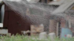 I letti del giardino di Jet Pours Green Lawn And nel paese stock footage