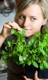 I Like Basil Stock Image