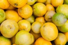 I limoni freschi mettono sul contatore del mercato dell'alimento Fotografia Stock