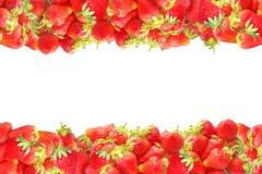 I livelli orizzontali o la struttura con l'estate rossa fresca fruttifica fragole isolate su fondo bianco Decorazione naturale pe Fotografia Stock Libera da Diritti