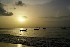 I ljus av solnedgången Arkivbilder