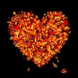 I love autumn! Heart shape from falling leaves Royalty Free Stock Photos