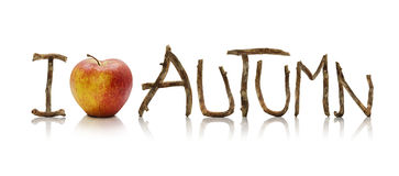 I Love Autumn. Words made from old wooden branches and an apple, isolated on a white background Royalty Free Stock Images