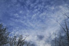 I love the blue sky. Beautiful sky with clouds Stock Photography